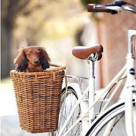 Не нужно изобретать велосипед?